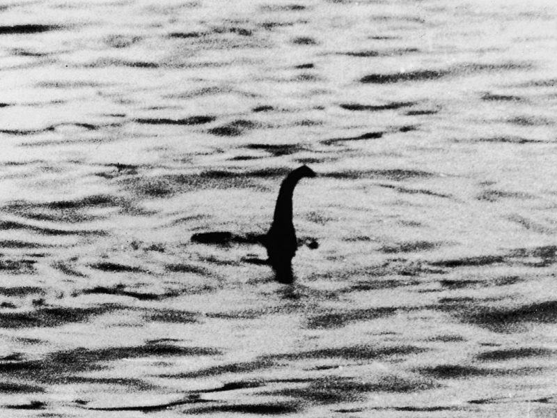 Loch Ness Monster Reportedly Spotted By Retired Firefighter