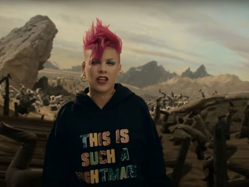 Pink's New Music Video Stars Her Husband and Kids: WATCH