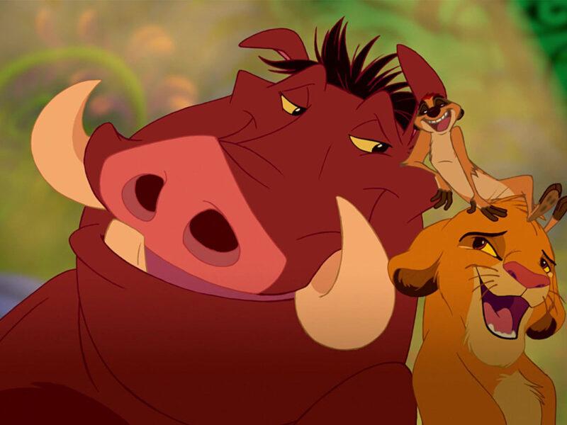 Hilarious Viral Warthog Video Shows Pumbaa Isn't So 'Hakuna Matata' In Real Life